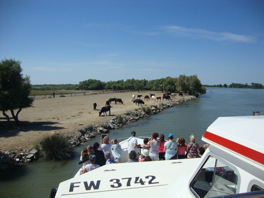 provenza-tour-75-1024x768-1610123727.jpg